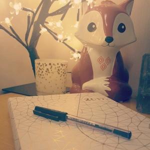 Foxy Diary